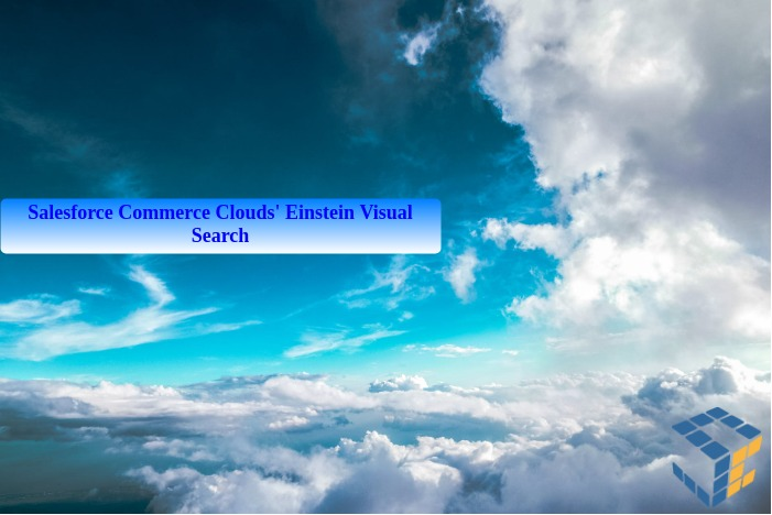 Einstein Visual Search